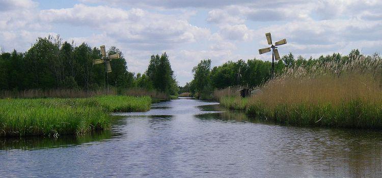 Waterzijgang met 2 molens in Weerribben